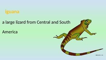I Wanna Iguana, Powerpoint, Scott Pearson Reading