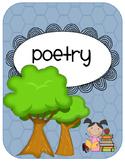 I am a Poet and I didn't Know It - A Poetry Pack