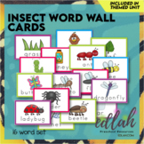 Insect Vocabulary Word Wall Cards (set of 10)