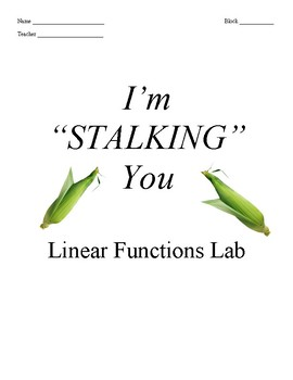 I'm Stalking You - Linear Functions and Statistics Lab