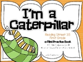 I'm a Caterpillar - Mini Book