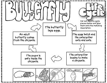 I'm a Caterpillar Reading Street 1st Grade Resource Pack Unit 3 Story 5