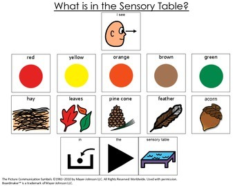 I see Leaves, Acorns, Hay- OH MY! {Sensory Table Visual support; autism}