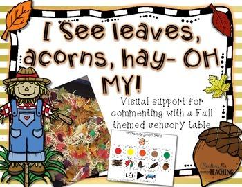 I see Leaves, Acorns, Hay- OH MY! {Sensory Table Visual su