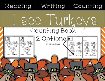 I see Turkey Mini Math Book