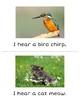 I hear- Animals