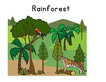 I see a Rain Forest