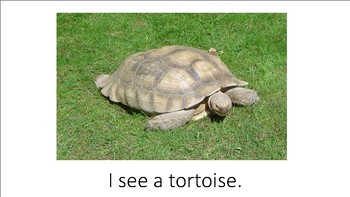 I see the zoo .