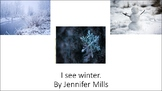 Winter I see book
