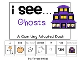 COUNTING...Ghosts Adapted Book