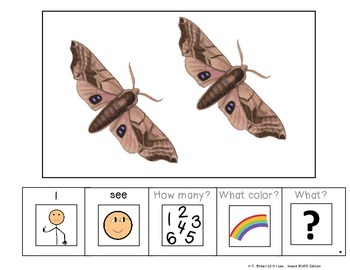 I see...How Many? Color? What? Insect Adapted Book BUGS Special Education Autism