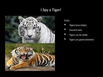 I spy a big cat.. (Powerpoint)