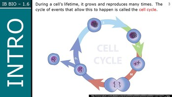 IB Biology (2016) - 1.6 - Cell Division PPT
