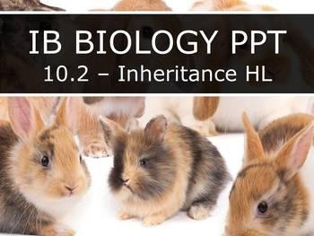 IB Biology (2016) - 10.2 - Inheritance HL PPT