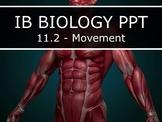 IB Biology (2016) - 11.2 - Movement PPT