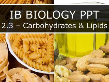 IB Biology (2016) - 2.3 - Carbohydrates & Lipids PPT