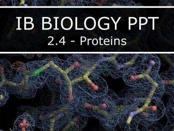IB Biology (2016) - 2.4 - Proteins PPT