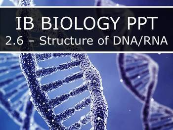 IB Biology (2016) - 2.6 - Structure of DNA & RNA PPT