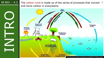 IB Biology (2016) - 4.3 - Carbon Cycling PPT
