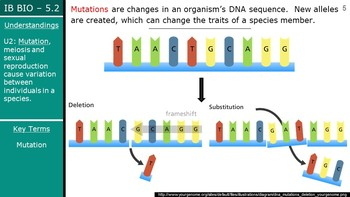 IB Biology (2016) - 5.2 - Natural Selection PPT