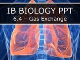 IB Biology (2016) - 6.4 - Gas Exchange PPT