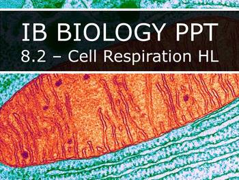IB Biology (2016) - 8.2 - Cell Respiration HL PPT
