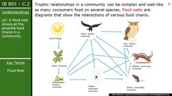 IB Biology (2016) - Option C.2 - Communities & Ecosystems PPT