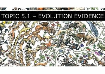 IB Biology (2016) - Topic 5 - Evolution & Biodiversity - PPT BUNDLE