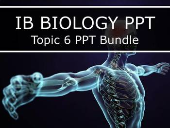 IB Biology (2016) - Topic 6 - Human Physiology PPTs BUNDLE