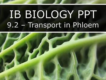 IB Biology (2016) - Topic 9 - Plant Biology PPTs BUNDLE