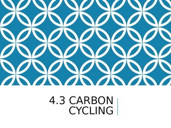 IB Biology - 4.3 - Ecology - Carbon Cycling - PowerPoint P
