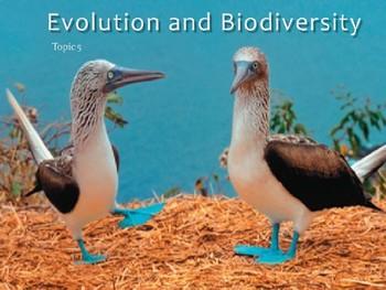 IB Biology - 5.1 - Evolution - Evidence of Evolution - Pow