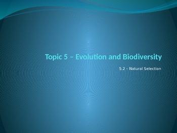 IB Biology - 5.2 - Evolution - Natural Selection - PowerPo