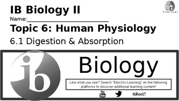 IB Biology Human Physiology 6.1 Video Lecture Student Handout (video link below)