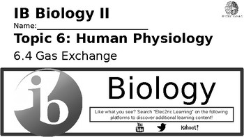 IB Biology Human Physiology 6.4 Video Lecture Student Handout (video link below)
