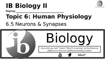IB Biology Human Physiology 6.5 Video Lecture Student Handout (video link below)