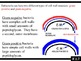 IB Biology (2009) - Topic F.1 - Diversity of Microbes PPT