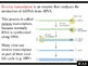 IB Biology (2009) - Topic F.3 - Microbes and Biotechnology PPT