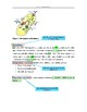 IB Biology Sample IA with annotations