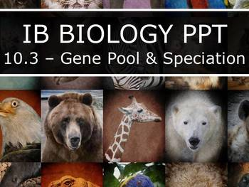 IB Biology (2016) - Topic 10 - Genetics & Evolution PPT BUNDLE