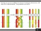 IB Biology (2009) - Topic 10.1 - Meiosis HL PPT