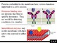 IB Biology (2009) - Topic 2.4 - Membranes PPT
