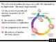 IB Biology (2009) - Topic 2.5 - Cell Division PPT