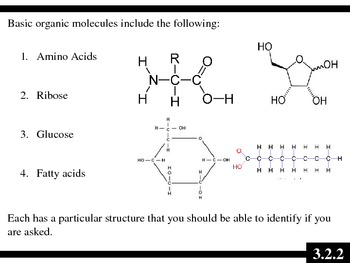 IB Biology (2009) - Topic 3.2 - Carbohydrates, Lipids & Proteins PPT