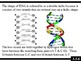 IB Biology (2009) - Topic 3.3 - DNA Structure PPT