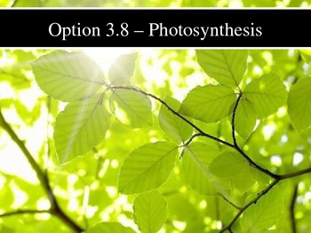 IB Biology (2009) - Topic 3.8 - Photosynthesis PPT