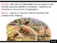 IB Biology (2009) - Topic 5.1 - Communities and Ecosystems PPT