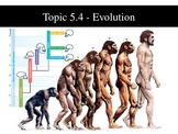 IB Biology (2009) - Topic 5.4 - Evolution PPT