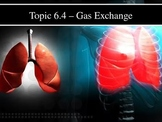 IB Biology (2009) - Topic 6.4 - Gas Exchange PPT