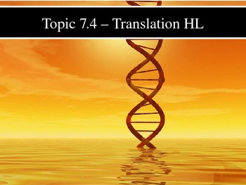 IB Biology (2009) - Topic 7.4 - Translation HL PPT